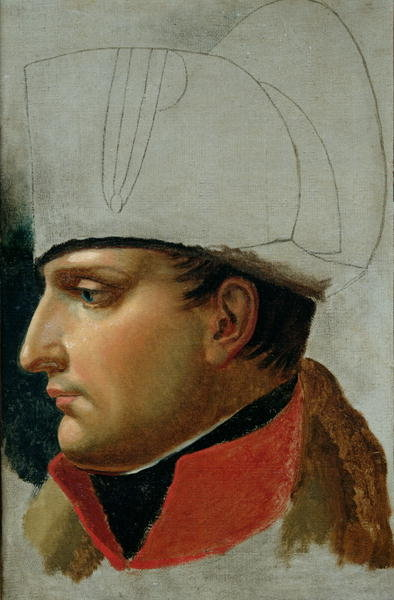 Unfinished Portrait of Napoleon I Fine Art Print by Anne Louis Girodet de Roucy-Trioson