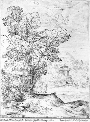 Wooded landscape Fine Art Print by Agostino Carracci