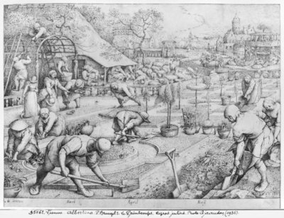 Spring, 1565 (pen & ink on paper) (b/w photo) Postcards, Greetings Cards, Art Prints, Canvas, Framed Pictures & Wall Art by Pieter the Elder Bruegel