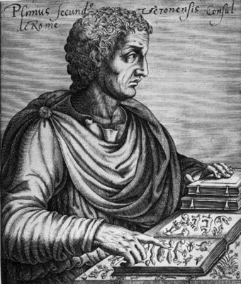 Pliny the Elder (23-79 AD) (engraving) Wall Art & Canvas Prints by French School