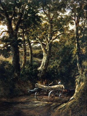 Gathering Timber (oil on canvas) Fine Art Print by Henry Earp