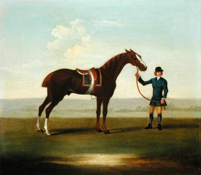 A Chestnut Horse (possibly Old Partner) held by a Groom (oil on canvas) Postcards, Greetings Cards, Art Prints, Canvas, Framed Pictures, T-shirts & Wall Art by James Seymour