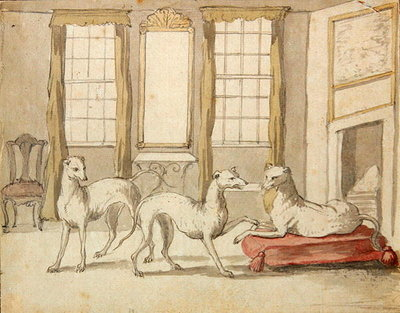 Three Greyhounds in a room (graphite and pen & ink on paper) Wall Art & Canvas Prints by Pieter Casteels