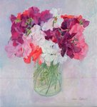 Sweet Peas, 1999 (oil on board) Wall Art & Canvas Prints by Jason Bowyer
