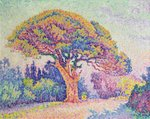 The Pine Tree at St. Tropez, 1909 (oil on canvas) Wall Art & Canvas Prints by Theo van Rysselberghe