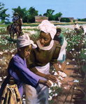 Cotton Pickers, 2003 (oil on board) Wall Art & Canvas Prints by American Photographer