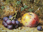 Apples and Grapes Fine Art Print by Clive Uptton