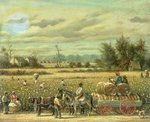 Picking Cotton Fine Art Print by William Aiken Walker