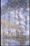 The Poplars, 1881 Fine Art Print by Claude Monet