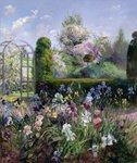 Irises in the Formal Gardens, 1993 Fine Art Print by Anthony Southcombe