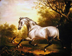 White Stallion in a Landscape Fine Art Print by John Frederick Herring Snr