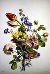 Study of a bunch of flowers, 1817 Wall Art & Canvas Prints by Jan Brueghel