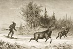 A Native American Moose hunting in the North Western Territory, c.1880 Fine Art Print by Gustave Courbet