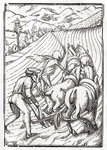 Death comes for the Farmer or Husbandman, engraved by Georg Scharffenberg, from 'Der Todten Tanz', published Basel, 1843 (litho) Wall Art & Canvas Prints by Hans Holbein The Younger