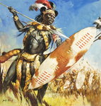 Zulu Warrior (gouache on paper) Wall Art & Canvas Prints by Angus McBride