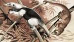 The Tamandua Fine Art Print by Helen Haywood