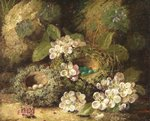 Primroses and Bird's Nests on a Mossy Bank, 1882 Fine Art Print by William Henry Hunt