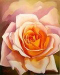 The Rose, 1999 (oil on canvas) Fine Art Print by Sarah O'Toole