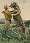An Irish wolfhound, on his hind legs, stands taller than his master, 1919 Fine Art Print by Maylee Christie