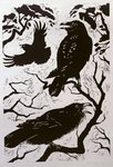 Ravens, 1998 (woodcut) Wall Art & Canvas Prints by Stanley Cooke