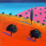 Pink Hill Wall Art & Canvas Prints by Paul Powis