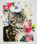 Pepper Fine Art Print by Julie Nicholls