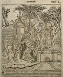 Adam and Eve, illustration from the 'Liber Chronicarum' by Hartmann Schedel Fine Art Print by German School