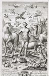 Adam in Paradise with the Animals, illustration to the introduction of Book 1 Part 7 of 'The Principles of Philosophy' by Anthony Le Grand, engraved by Johannes Kip Poster Art Print by Master Bertram of Minden