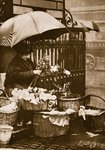 A flower seller at Piccadilly Circus Wall Art & Canvas Prints by English Photographer