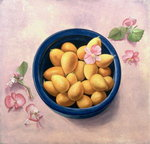 Kumquats and Blossoms, 1986 (oil on canvas) Postcards, Greetings Cards, Art Prints, Canvas, Framed Pictures, T-shirts & Wall Art by Joseph Jacob Plenck