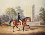 The Marquis of Anglesea on Horseback in Hyde Park, in his 80th year, engraved by J. Harris, 1847 (colour engraving) Fine Art Print by English School