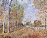 A Corner of the Woods at Sablons, 1883 (oil on canvas) Postcards, Greetings Cards, Art Prints, Canvas, Framed Pictures, T-shirts & Wall Art by Alfred Sisley