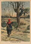 Cutting the mistletoe, back cover illustration from 'Le Petit Journal', supplement illustre, 4th January 1914 (colour litho) Postcards, Greetings Cards, Art Prints, Canvas, Framed Pictures & Wall Art by Henri-Paul Motte