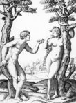 Adam and Eve, engraved by Marcantonio, c.1520 (engraving) Wall Art & Canvas Prints by Andre Jacques Victor Orsel