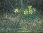Narcissi and Violets, c.1867 (pastel on paper) Fine Art Print by Ursula Hodgson