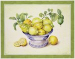 Bowl of Lemons, 1990 Fine Art Print by William Henry Hunt