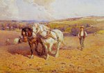 Ploughing Wall Art & Canvas Prints by Peter Jackson