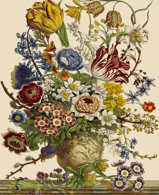 Flowers in a vase Fine Art Print by Pieter Casteels