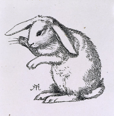 A rabbit by A Hughes - print