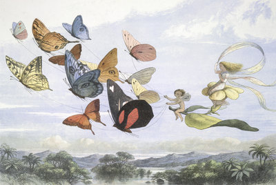 The Fairy Queen by Richard Doyle - print
