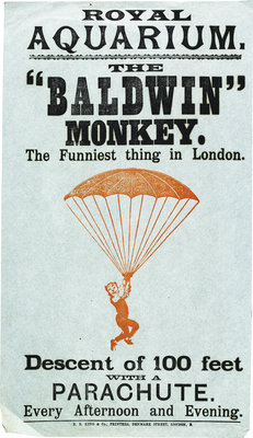 The Baldwin Monkey by Anonymous - print