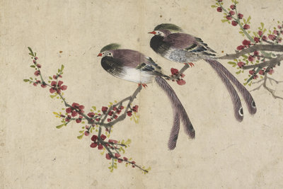 Long-tailed birds on plum tree branch by Kyomjae - print