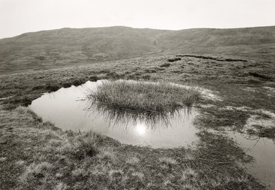 Reflected sun by Fay Godwin - print