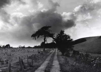 Roman Road by Fay Godwin - print