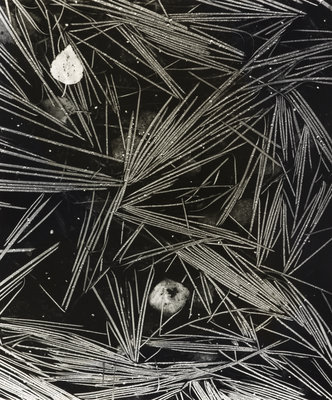 Flooded Grass by Fay Godwin - print