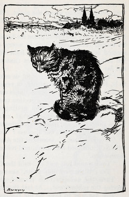 A cat by Arthur Rackham - print