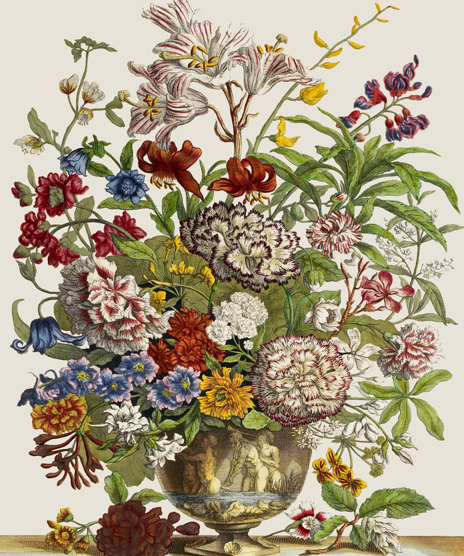 flower vases london with Flowers In A Vase on View Product besides Diy Ideas For Perfect Wedding Centerpieces besides English Rose in addition Stock Illustration Gerbera Flower Abstract Flower Oil Painting Still Life Vase Bouquet Flowers Image45322871 additionally Zena Star Vegetable Peeler.