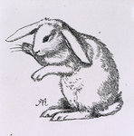 A rabbit by Charles Robinson - print