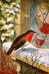 Robin by Madonna Master - print