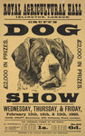 Cruft's dog show Fine Art Print by Anonymous